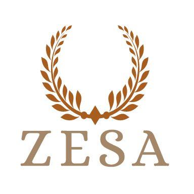 ZESA – Online Marketing und mehr aus Königstein